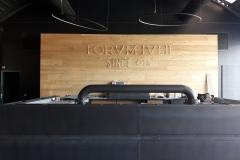 Forum Ivlii