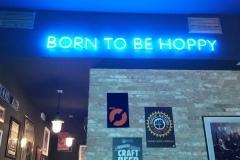 Born to be hoppy